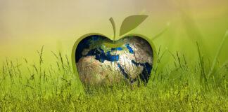 Ανακύκλωση πλαστικών